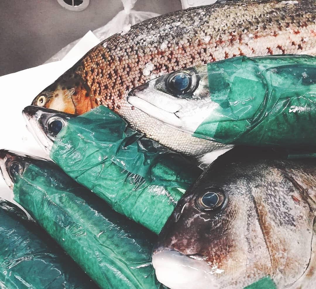 鮮魚の魚の入荷の入荷情報の新所沢の所沢のイタリアンのディナーのランチの美味しいのグルメのレストランの本格料理のシェフのワインの産地直送のfishの駅チカの飲食店の洋食のソムリエの評判のランキングの本場の味のトロンコーネのtroncone